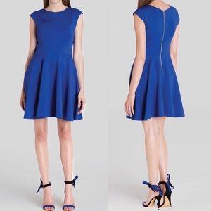 Ted Baker   Arwyn Royal Blue Paneled Skater Dress